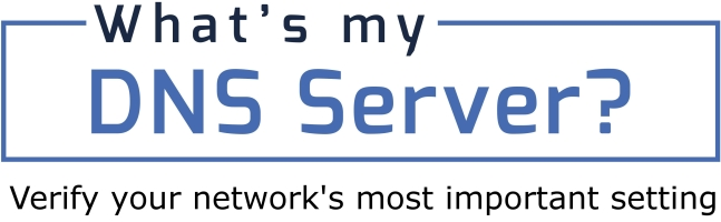 What's My DNS Server? Logo